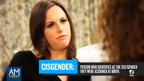 Alicia Menendez Cisgender Journalist
